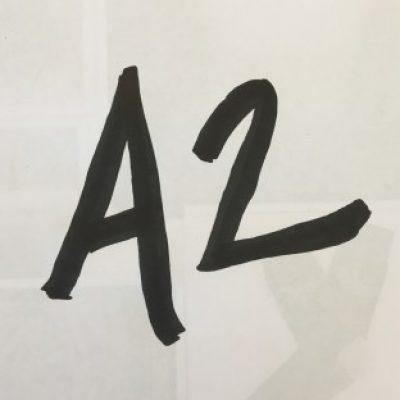 Group logo of Kaci's A2 August 2017